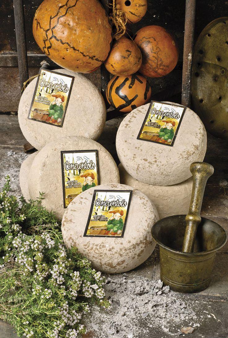 """Il #Pecorino Cenerentolo, stagionato sotto cenere, è un #formaggio di pasta bianca e compatta. Prodotto da un caseificio artigiano in Toscana, è affinato nel nostro stabilimento sino a giusta maturazione e poi posto sotto #cenere per completare la stagionatura """"come si faceva una volta"""".  #canticheese #cheese #käse #fromage"""