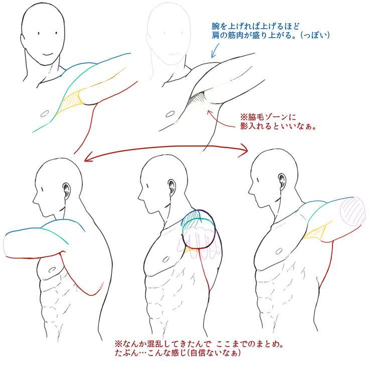 なんちゃって筋肉の描き方【自分用】 [12]