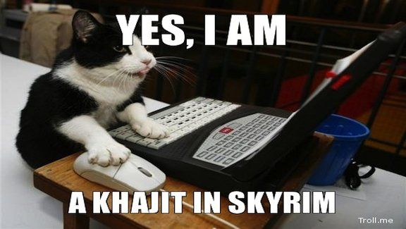 Aaaaw. If only they hadn't spelled Khajiit wrong,