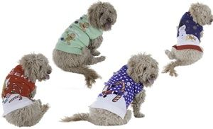 https://www.groupon.com/deals/gg-new-york-dog-ugly-holiday-sweater-11?p=2