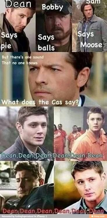 What does the Cas say? Hilarious