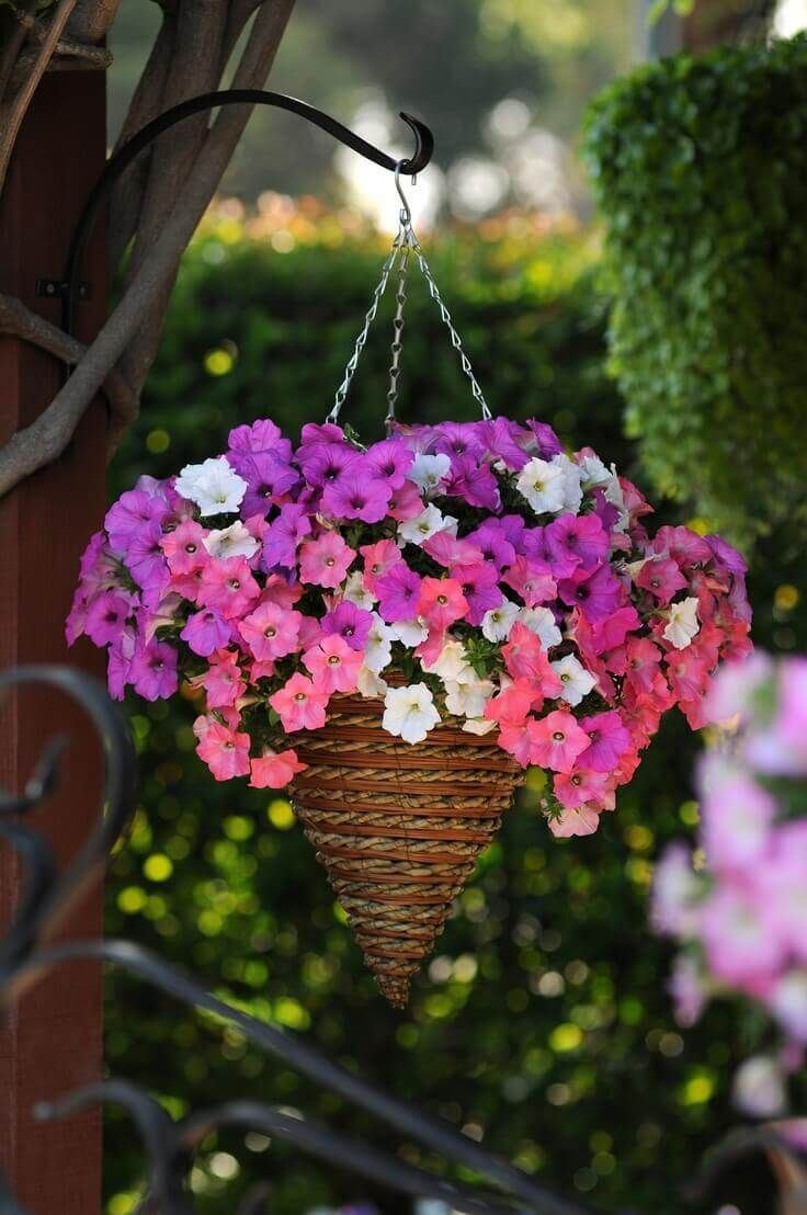 804 best images about garden ideas on pinterest - Hanging flower pots ideas ...