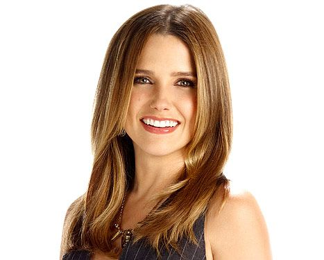 Sophia Bush: It's Fun Playing the Only Female Lead in CBS' Partners - Us Weekly