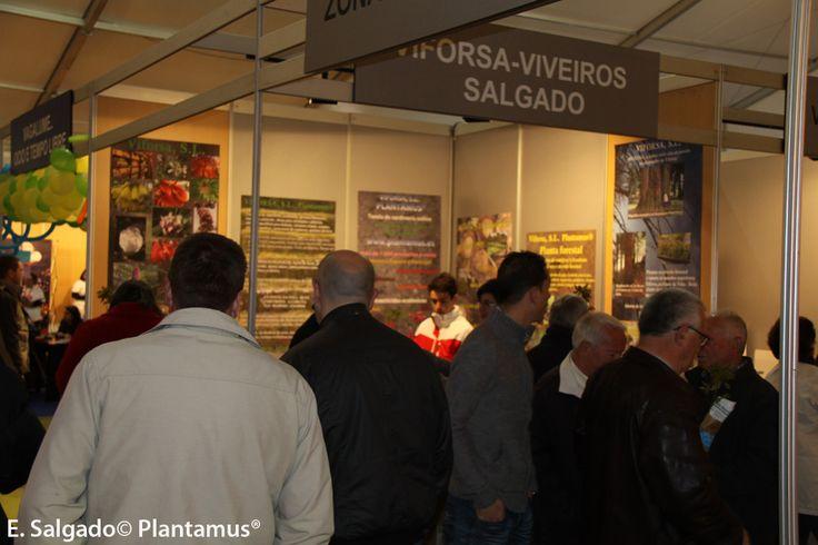 Expoordes 2013