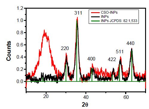 Figure 3 X-ray diffraction (XRD) patterns of nanoparticles.