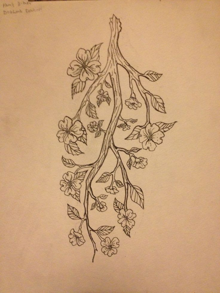 arm design of a dogwood branch family tree my