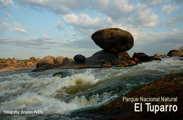 Parque Nacional Natural El Tuparro | Colombia
