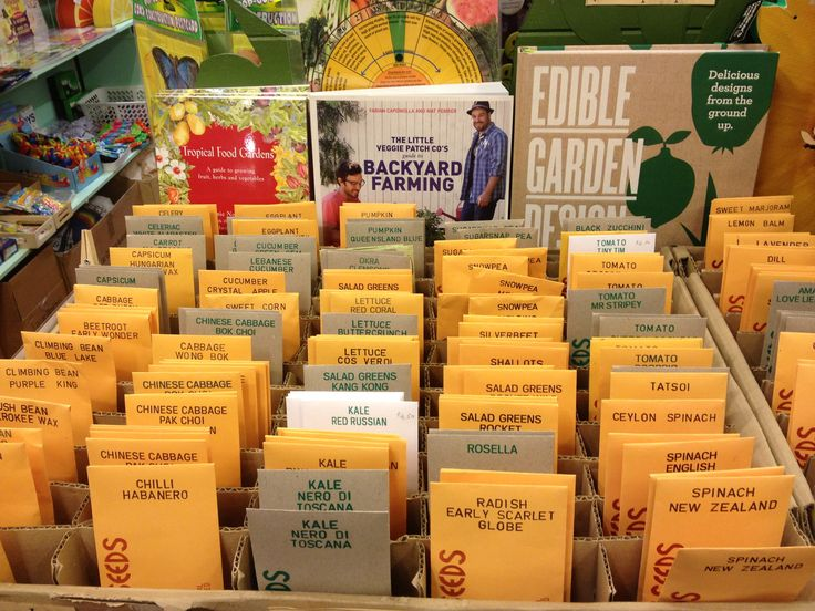 Here's a pic from inside The Green House of our Eden Seeds selection - time to start planting!