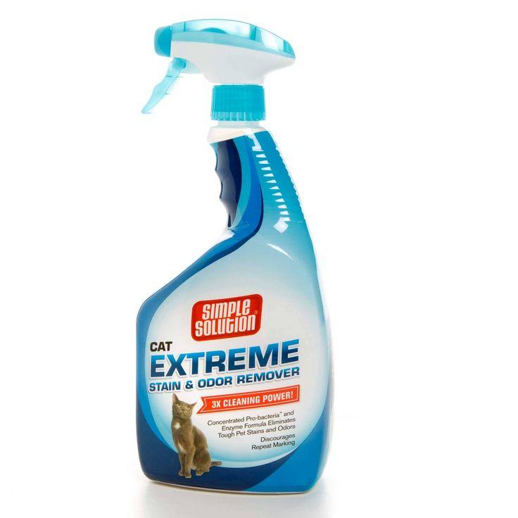 Best 20+ Cleaning Cat Urine Ideas On Pinterest