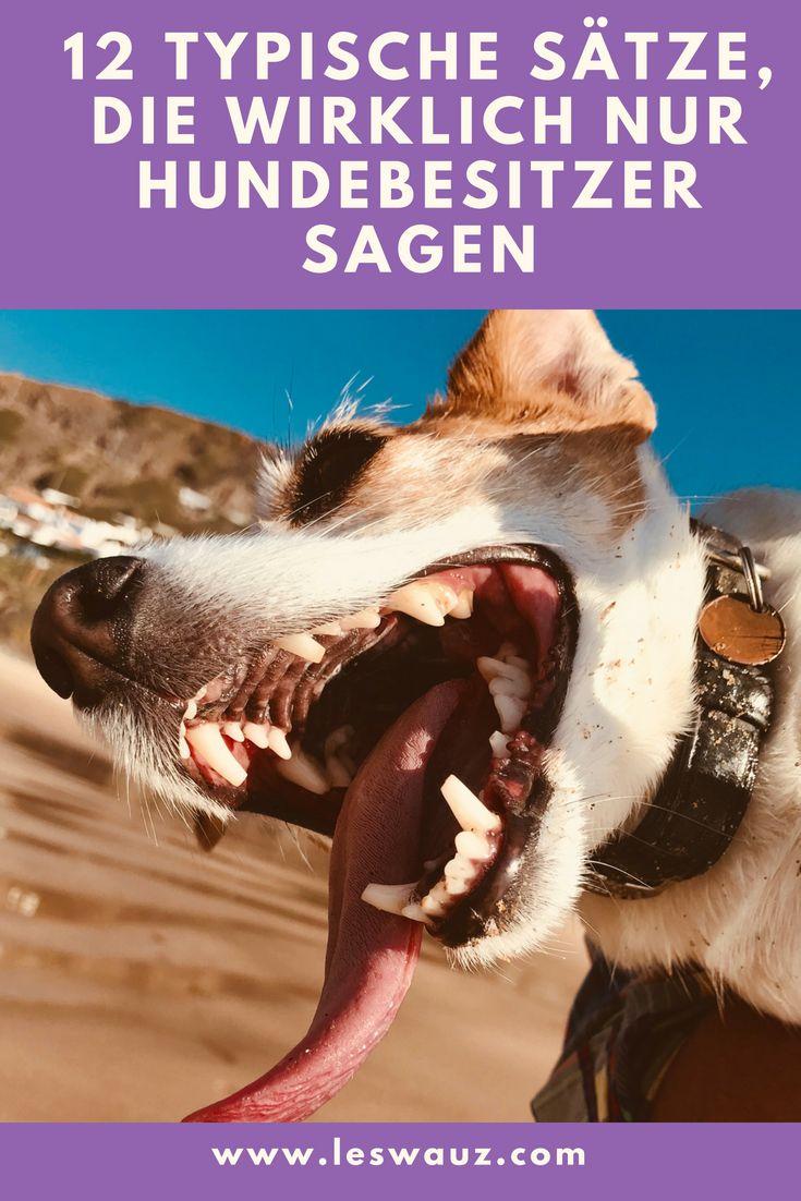 12 typische Sätze, die wirklich nur Hundebesitzer so sagen