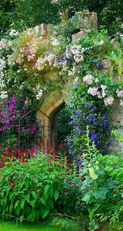 Beautiful flowered arch way.