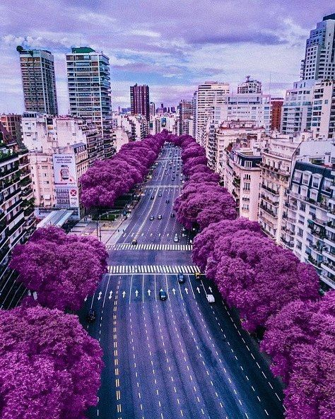 Buenos Aires, Argentina⠀ Tag us to be featured!⠀ -⠀ #travel #traveling #TFLers #vacation #visiting #instatravel #instago #instagood #trip #holiday #photooftheday #fun #travelling #tourism #tourist #instapassport #instatraveling #mytravelgram #travelgram #travelingram #igtravels