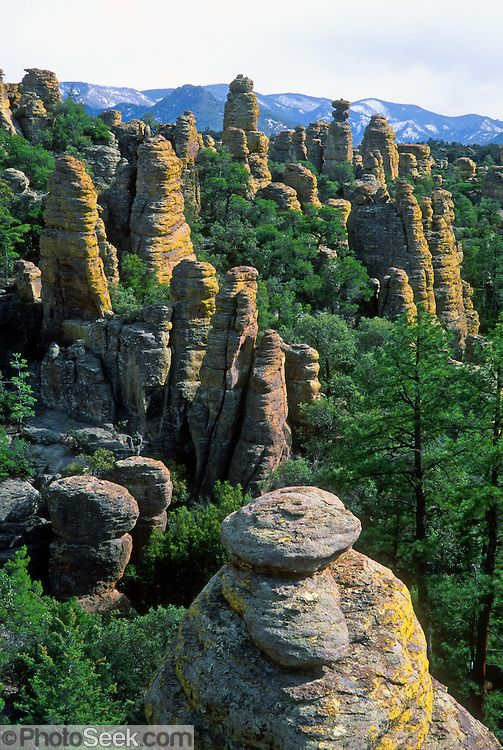 Chiricahua National Monument  Arizona// I love this place so much!