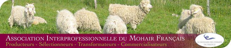 Association Interprofessionnelle du Mohair Français