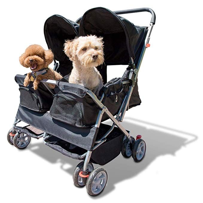Amazon Com Paws Pals Double Pet Stroller 4 Wheels Lightweight Two Puppy Dog Cat Strollers Best For Walking 2 In 2020 With Images Cat Stroller Pet Stroller Dog Stroller