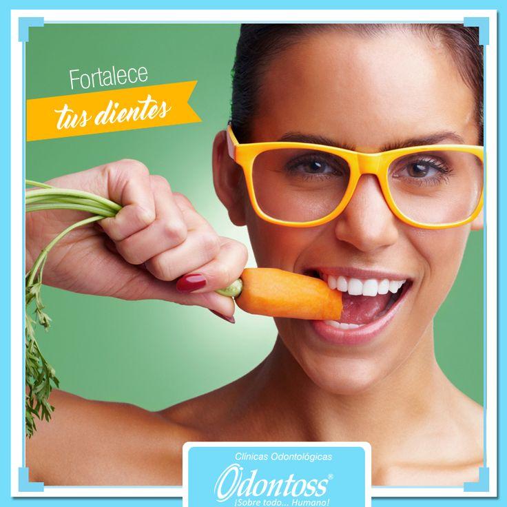 Comer zanahoria fortalece tus dientes y encías. Ingerir esta verdura cruda mejora el riego sanguíneo bucal y evita que las bacterias se adhieran a tus dientes.  www.odontoss.com