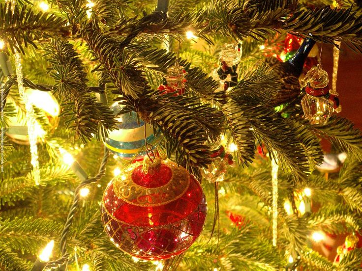 Diy Projects: Christmas Ornaments Ideas