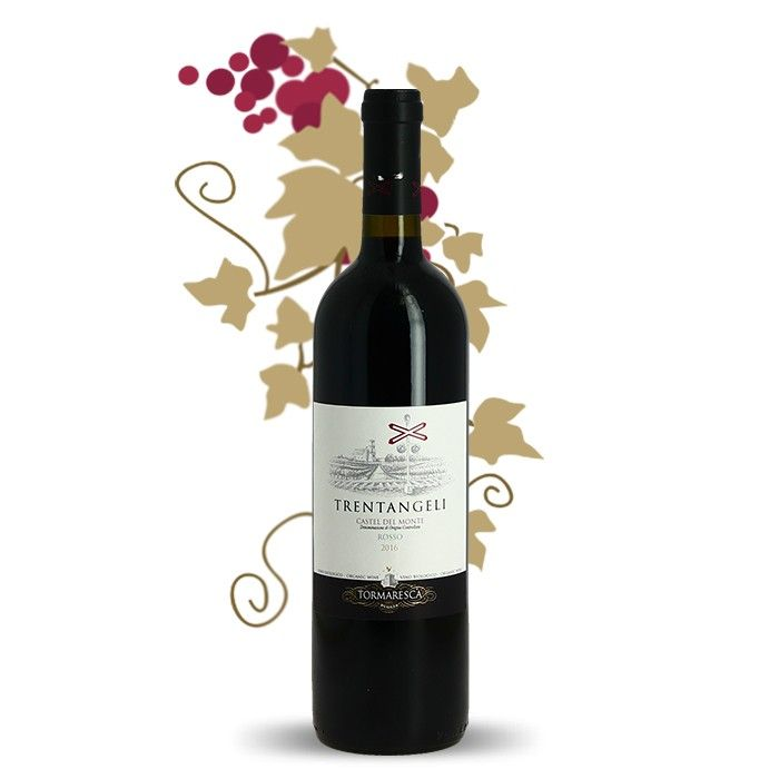 Trentangeli Castel Del Monte Par Tomaresca Vin Rouge Bio Des Pouilles Red Wine Wine Italian Wine