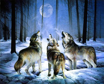 """""""Three Dog Night""""~Spencer WilliamsAnimal Art, Stuff, Search, Wolf, Moon Art, Pictures, Things, Howls Wolves, Wildlife Animal Painting"""
