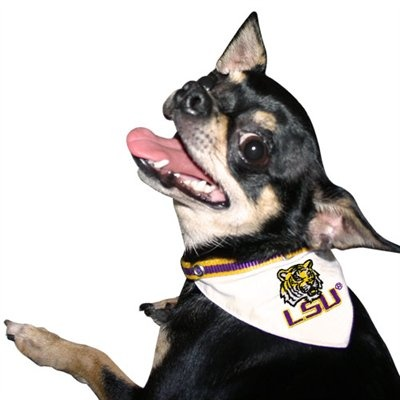 #LSU Tigers Nylon Pet Collar Bandana. Gear up your pooch for gameday!: New Orleans Saint, Bandanas 995, Dogs Collars, Pets, Nylons Pet, Saint Pet, Collars Bandanas, Dogs Bandanas, Pet Collars