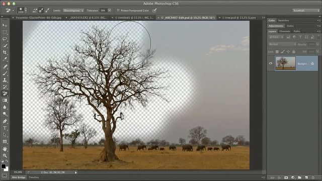 Photoshop Mastery: Advanced Masking