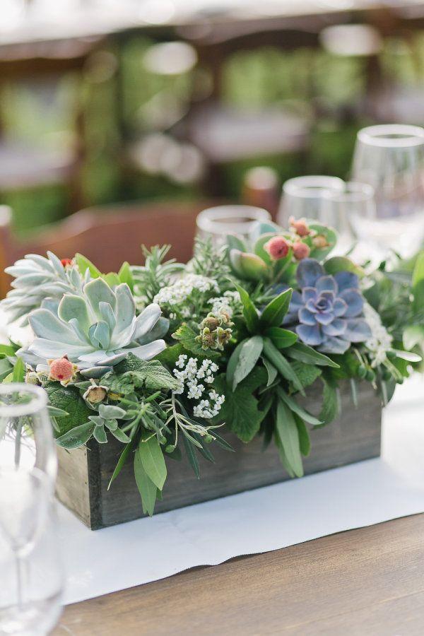 Pretty succulent centerpiece: http://www.stylemepretty.com/california-weddings/aptos/2015/08/31/rustic-elegant-outdoor-wedding-at-devine-ranch/   Photography: Bluella - http://bluella.com/