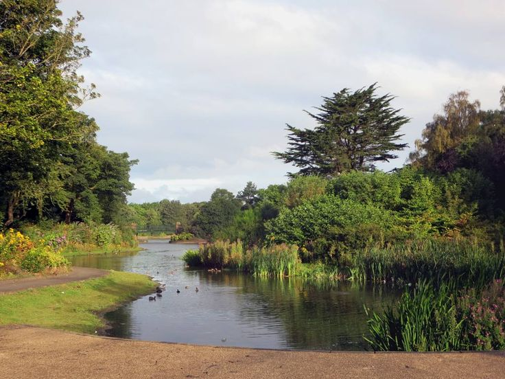 The East Lake at Stanley Park in Liverpool, England, provides habitat for local wildfowl.