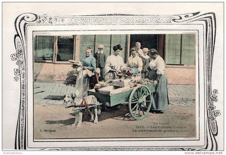 En Sologne Loiret 45   Attelage de chien   La marchande de quatre-saisons