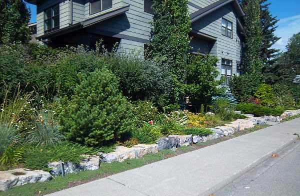 Large stone edging is a great alternative to low stone walls. They are very easy to build for a do-it-yourself project. The size and weight of these large natural stones makes them very stable.