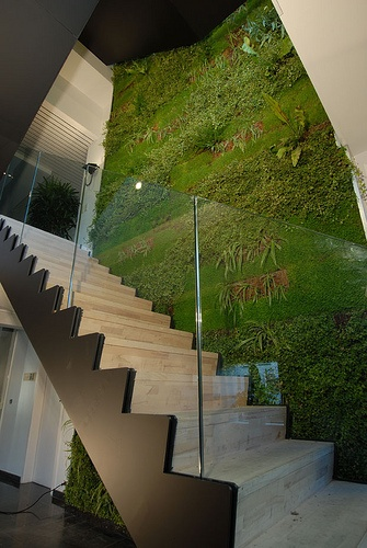 greenwall De Boer - Schoten, België #green #greenwall #livingwall #verticalgarden