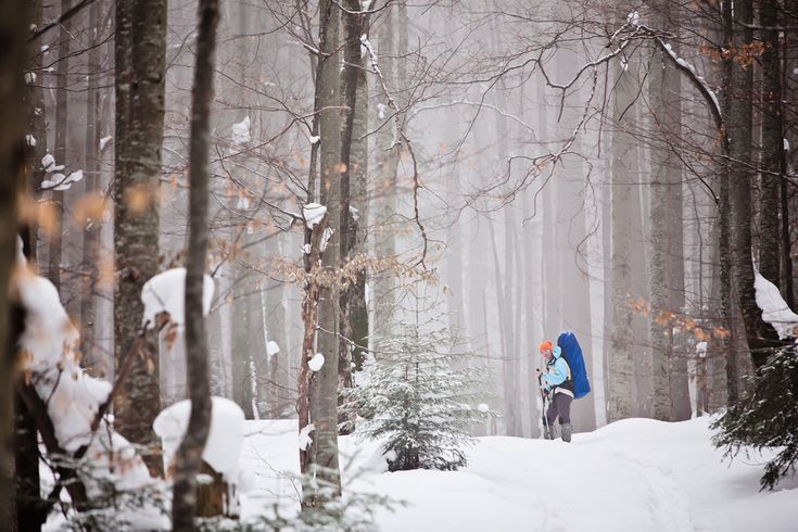 The 3 Best Winter Hiking Trails in the Smoky Mountains