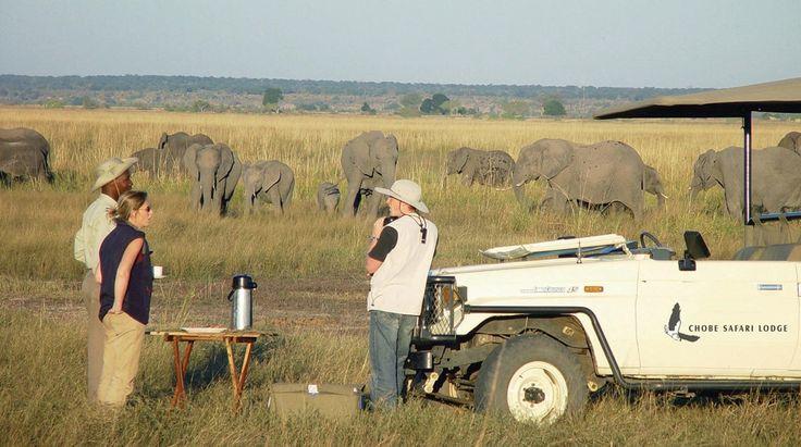 Botswana Lodge Explorer | Bench Africa