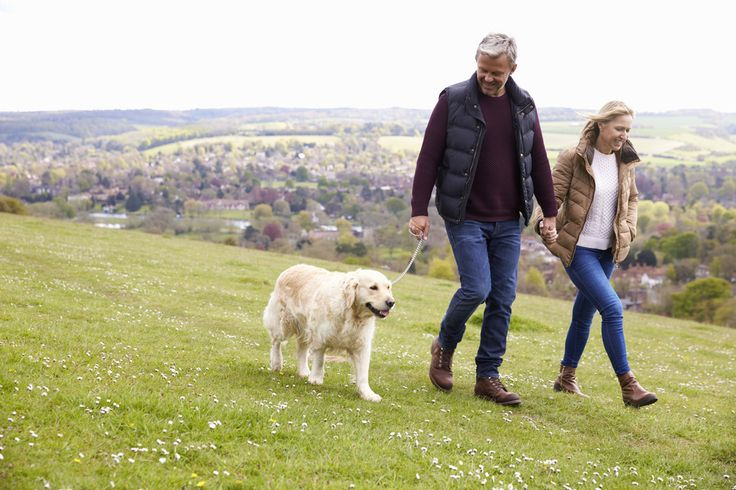 National Walking Month - a blog by Liz