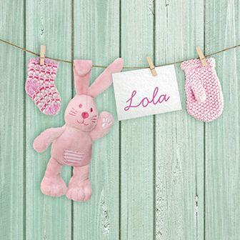 Dit geboortekaartje voor een meisje is voorzien van een waslijn met schattige items.