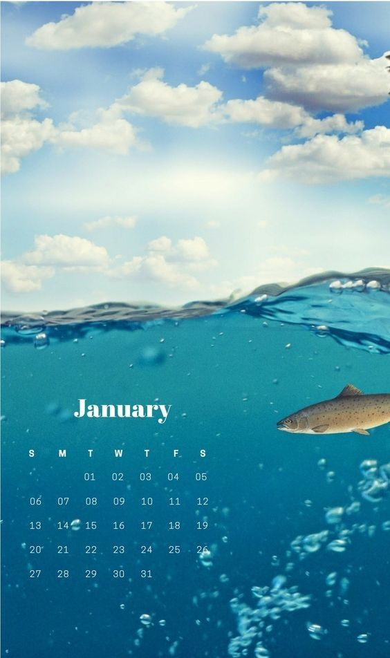 Fishing Calendar January 2019 Cute January 2019 Calendar Background Wallpaper | Cute January