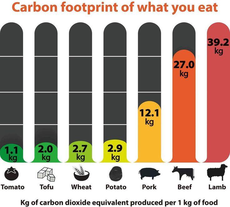 402 best eco friendly | #plantpowerz images on Pinterest ...