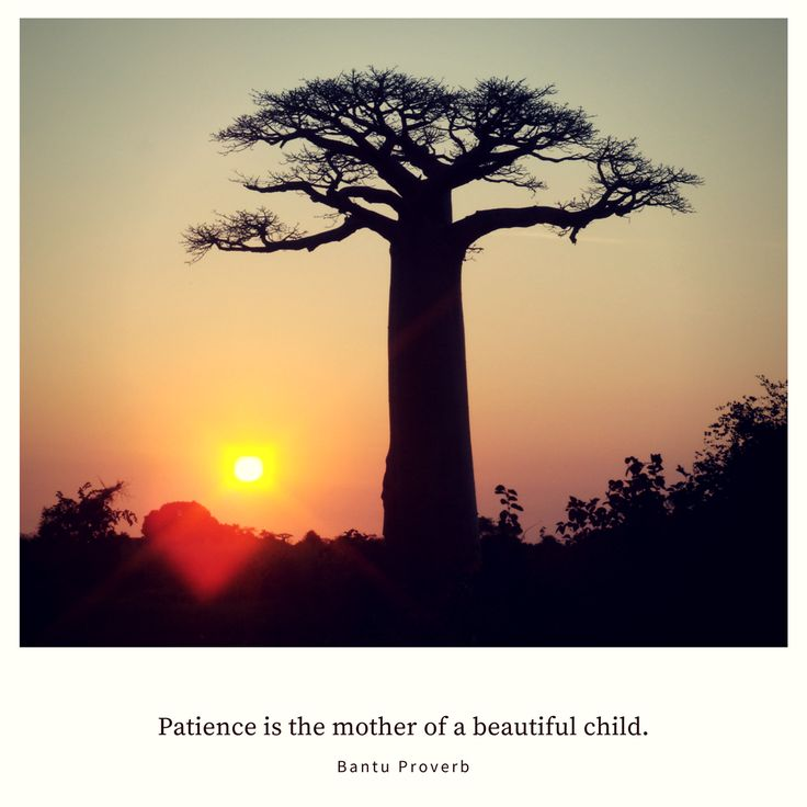 Patience is the mother of a beautiful child. – Bantu Proverb