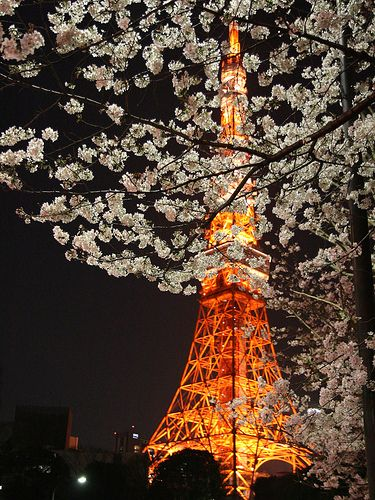Spring Has Come - Tokyo Tower, Japan - 2007 - ooma90 photography