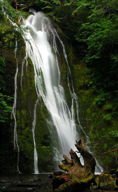 Madison Falls ~ Located in the Elwha River Valley, Olympic National Park, Washington State - A visit to Lake Crescent Lodge #olympicnationalpark