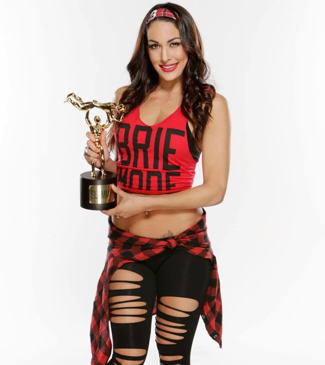 2014 WWE Slammy Winners