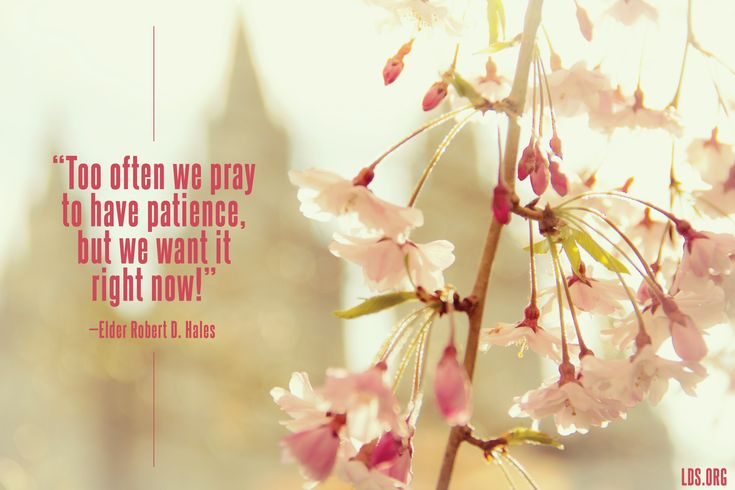 """""""Too often we pray to have patience, but we want it right now!"""" —Elder Robert D. Hales"""