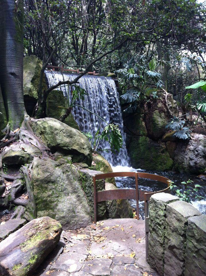Jardín Botánico José Celestino Mutis en Bogotá, Bogotá D.C.