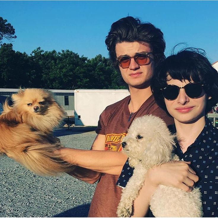 I DONT CARE WHO YOU ARE THERE IS NOTHING CUTER THAN FINN WOLFHARD IN SUNGLASSES HOLDING A PUPPY