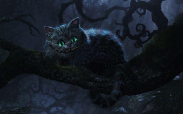 Cheshire Cat Tim Burton Fond Ecran Hd Chat De Cheshire Chats Disney Fond D Ecran Dessin Anime