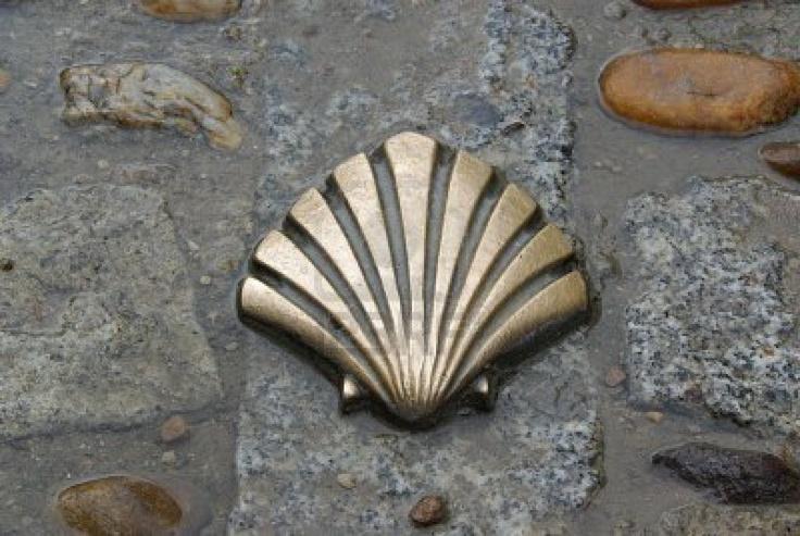 St James shell  Stock Photo