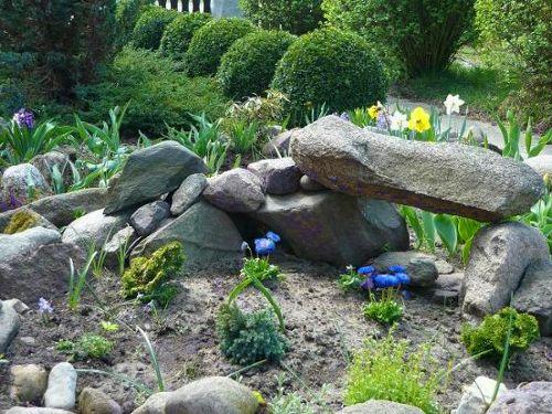 Secret Garden: 51 Best Alpine Gardens Images On Pinterest