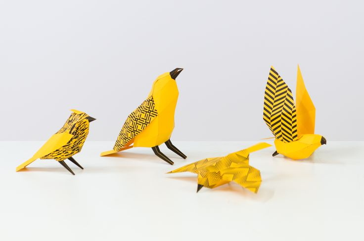 Over 100 paper engineered birds of varying species, colour and fashion patterns. Featuring patterns from local St James Architects.
