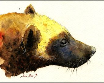 """ORIGINAL-Wolverine gluton american wolves mountain cute grass in the forest animal 8x5"""" art original Watercolor painting by Juan bosco"""