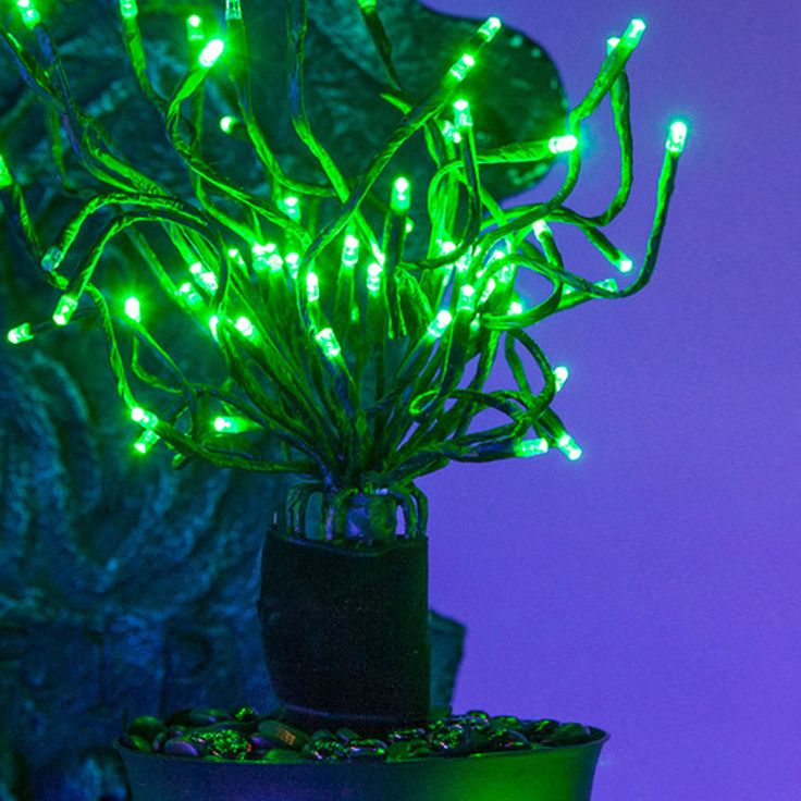 35 Best Green Lights Images On Pinterest Green Lights