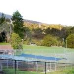 View of our converted tennis court, now large exercise yards. (yarra valley kennels, healesville cat and dog boarding)